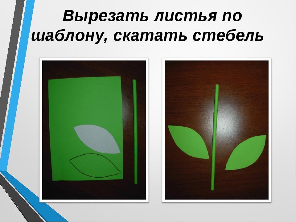 Вырезать листья по шаблону, скатать стебель