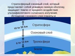 Стратосферный озоновый слой, который представляет собой уязвимую газовую обо