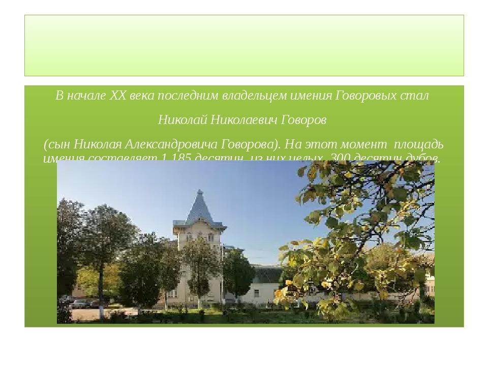 В начале XX века последним владельцем имения Говоровых стал Николай Николаев...