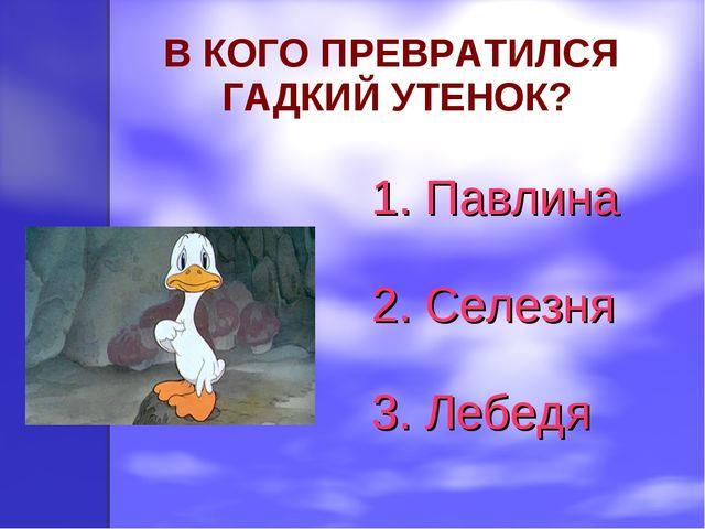 В КОГО ПРЕВРАТИЛСЯ ГАДКИЙ УТЕНОК? 1. Павлина 2. Селезня 3. Лебедя