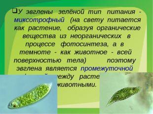 У эвглены зелёной тип питания - миксотрофный (на свету питается как растение,