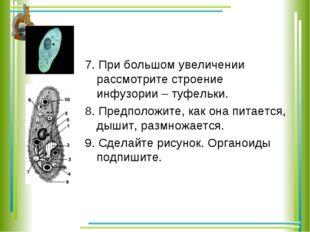 7. При большом увеличении рассмотрите строение инфузории – туфельки. 8. Предп