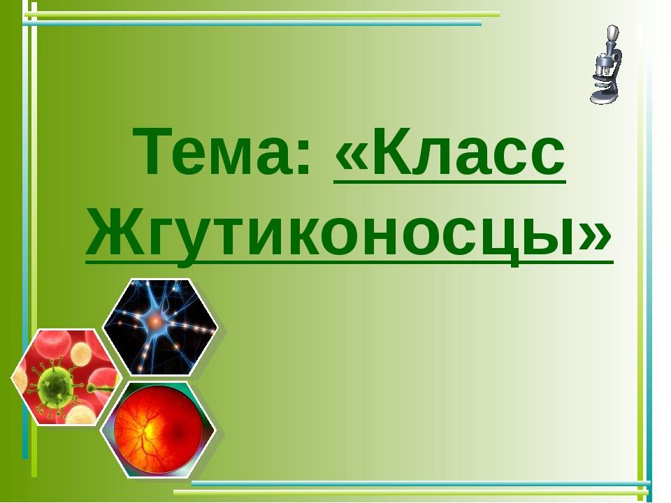 Тема: «Класс Жгутиконосцы»