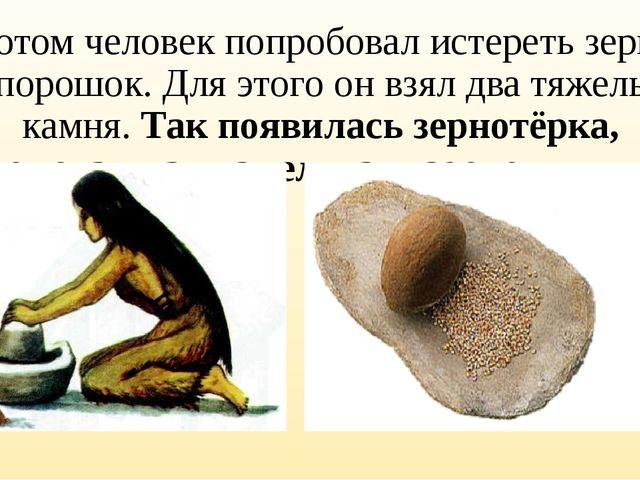 Потом человек попробовал истереть зерна в порошок. Для этого он взял два тяже...