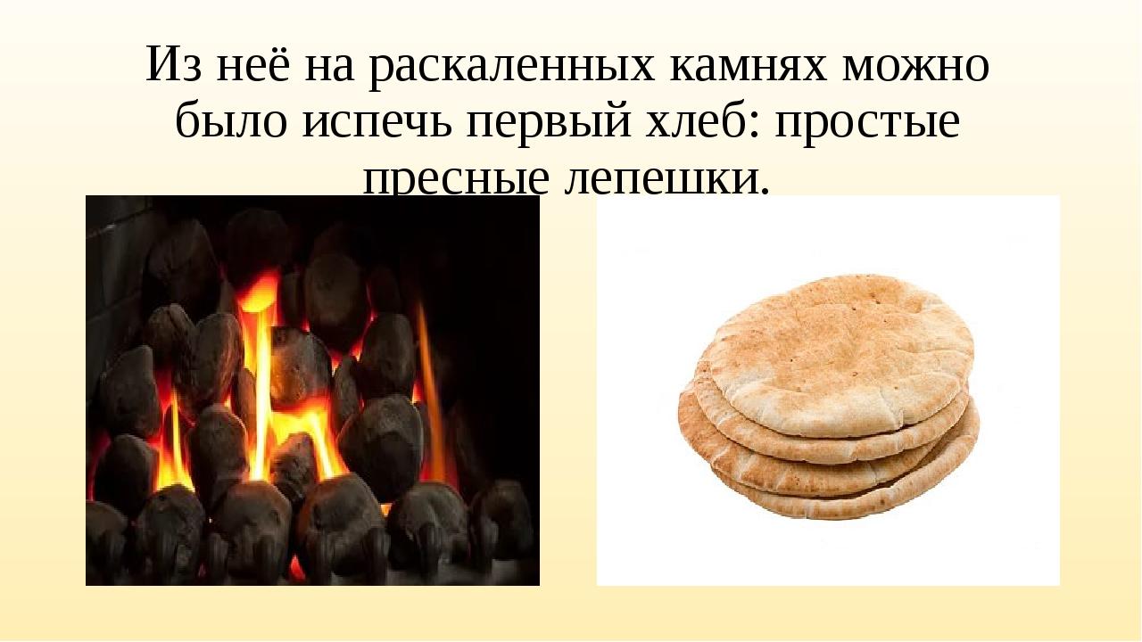 Из неё на раскаленных камнях можно было испечь первый хлеб: простые пресные л...