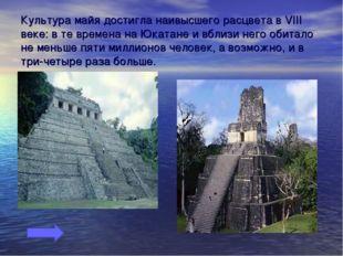 Культура майя достигла наивысшего расцвета в VIII веке: в те времена на Юката