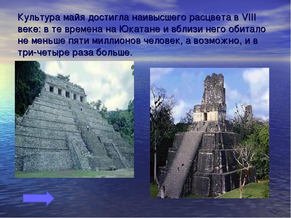 Культура майя достигла наивысшего расцвета в VIII веке: в те времена на Юката...