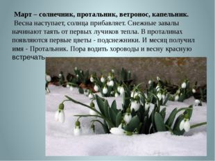 Март – солнечник, протальник, ветронос, капельник. Весна наступает, солнца п