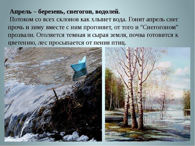 Апрель – березень, снегогон, водолей. Потоком со всех склонов как хлынет вод...