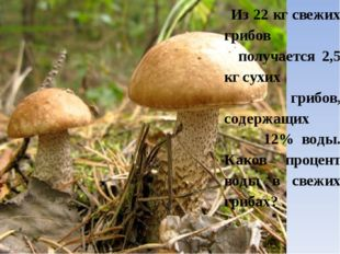 Из 22 кг свежих грибов получается 2,5 кг сухих грибов, содержащих 12% воды.