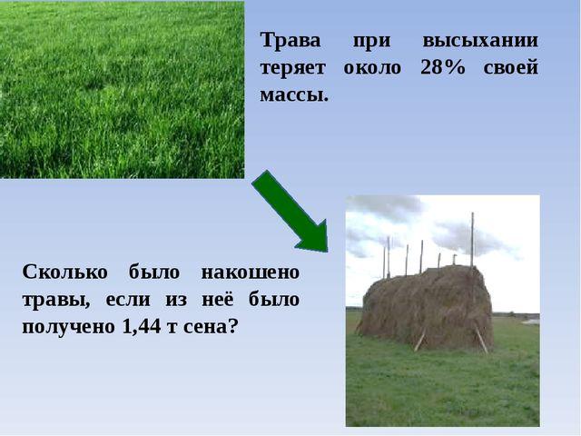 Трава при высыхании теряет около 28% своей массы. Сколько было накошено трав...