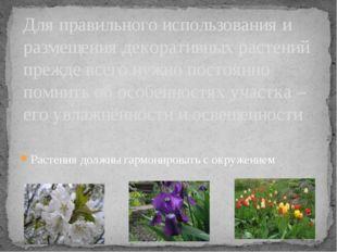 Растения должны гармонировать с окружением Для правильного использования и ра