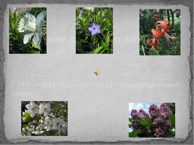 ГУВК «ОШ І-ІІІ ступеней№12- многопрофильный лицей» Озеленение школьного двора