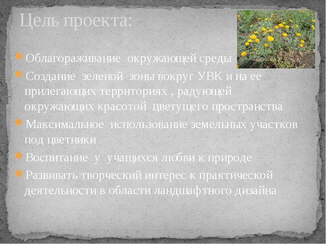 Облагораживание окружающей среды Создание зеленой зоны вокруг УВК и на ее при...