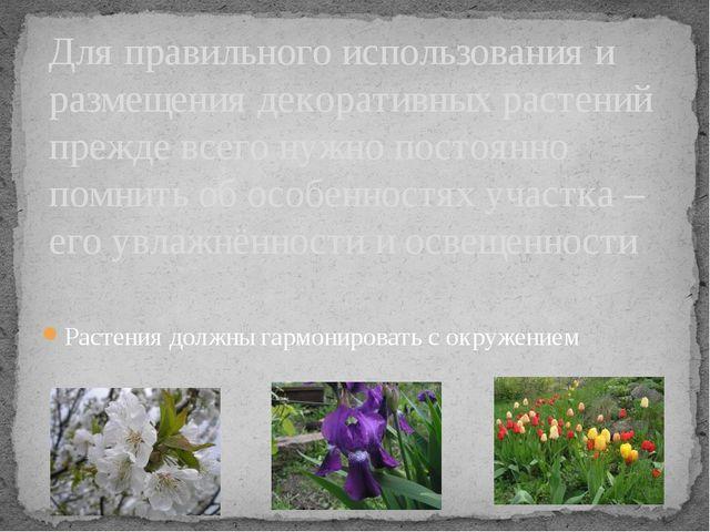 Растения должны гармонировать с окружением Для правильного использования и ра...