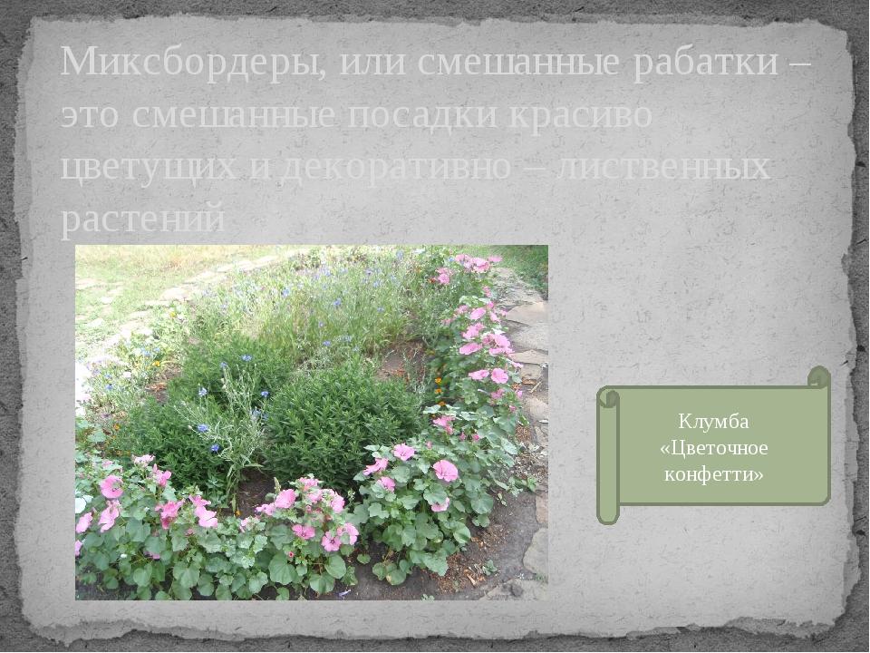 Миксбордеры, или смешанные рабатки – это смешанные посадки красиво цветущих и...