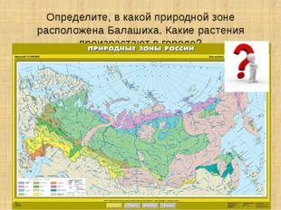 Определите, в какой природной зоне расположена Балашиха. Какие растения произ