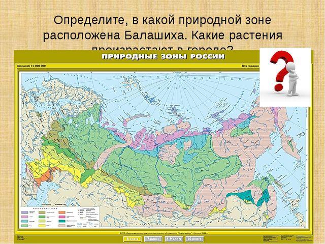 Определите, в какой природной зоне расположена Балашиха. Какие растения произ...