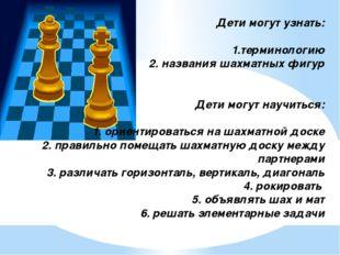 Дети могут узнать: 1.терминологию 2. названия шахматных фигур Дети могут нау