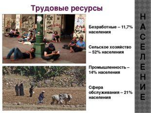 Трудовые ресурсы НАСЕЛЕНИЕ Безработные – 11,7% населения Сельское хозяйство –