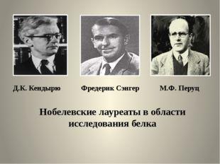 Д.К. Кендырю Фредерик Сэнгер М.Ф. Перуц Нобелевские лауреаты в области исслед