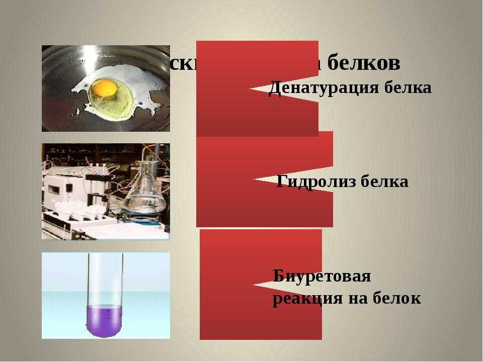 Химические свойства белков Денатурация белка Гидролиз белка Биуретовая реакц...