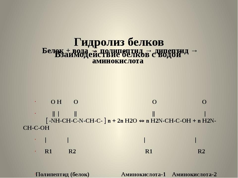 Гидролиз белков Взаимодействие белков с водой Белок + вода → полипептид → ди...