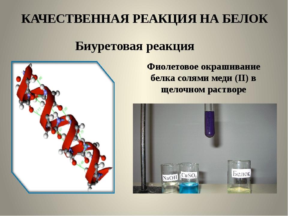КАЧЕСТВЕННАЯ РЕАКЦИЯ НА БЕЛОК Биуретовая реакция Фиолетовое окрашивание белка...