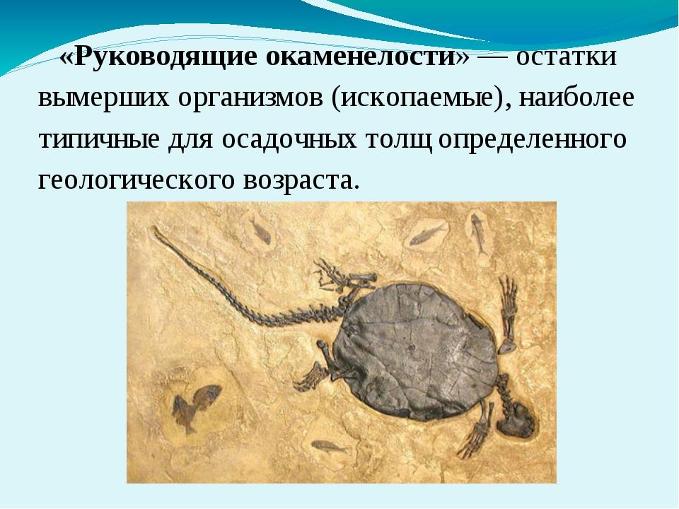 «Руководящие окаменелости» — остатки вымерших организмов (ископаемые), наибол...