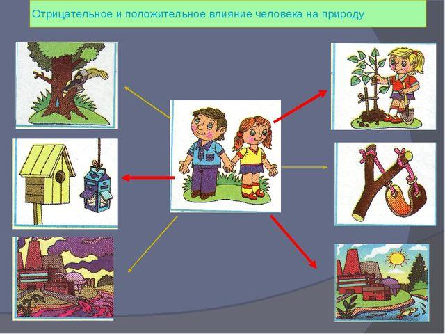 Отрицательное и положительное влияние человека на природу