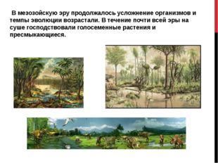 В мезозойскую эру продолжалось усложнение организмов и темпы эволюции возрас