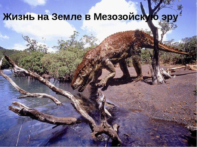 Мезозойская эра Жизнь на Земле в Мезозойскую эру