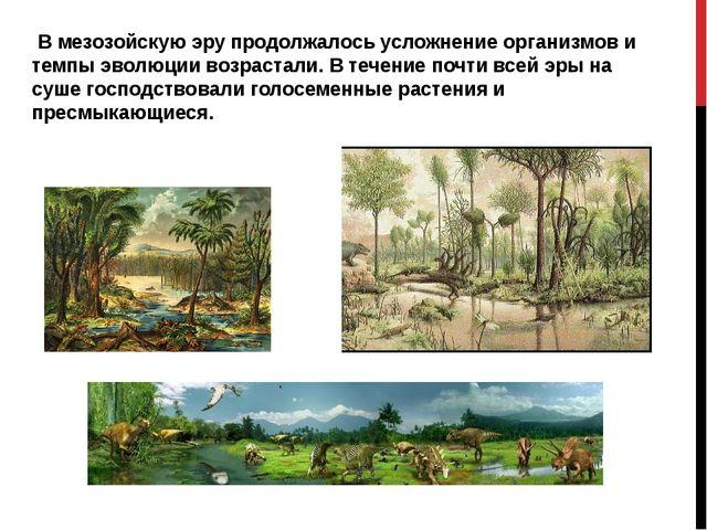 В мезозойскую эру продолжалось усложнение организмов и темпы эволюции возрас...