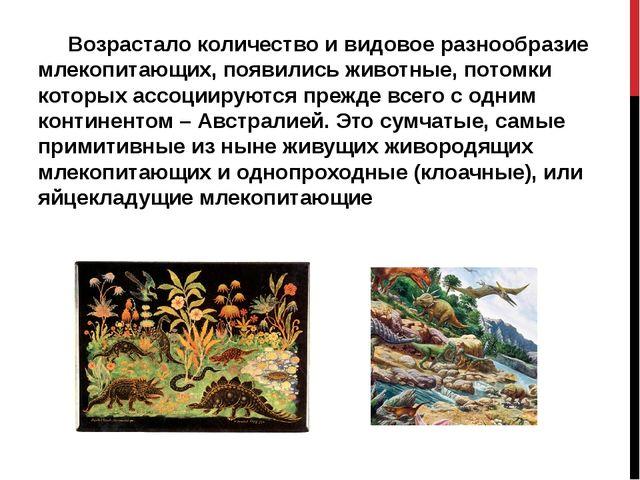 Возрастало количество и видовое разнообразие млекопитающих, появились животн...