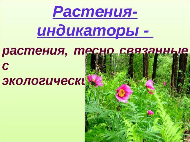 Растения-индикаторы - растения, тесно связанные с определенными экологическим...