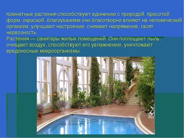 Комнатные растения способствуют единению с природой. Красотой форм, окраской,...