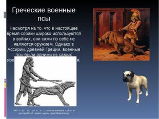 Греческие военные псы Несмотря на то, что в настоящее время собаки широко исп