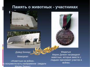 Память о животных - участниках войн Дэвид Бэкхаус Мемориал «Животные на войн