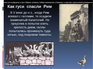 """Иранский боевой слон, рисунок Гератской школы, XV век. """"Экипаж"""" состоял из в"""