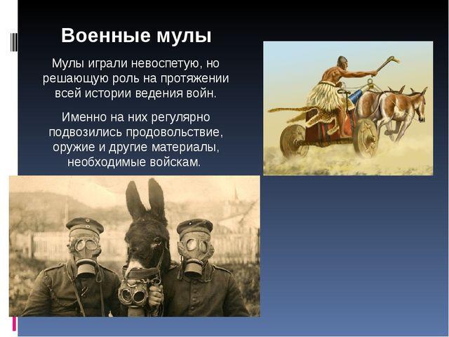 Военные мулы Мулы играли невоспетую, но решающую роль на протяжении всей исто...