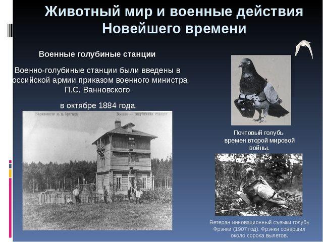 Военные голубиные станции Военно-голубиные станции были введены в Российской...