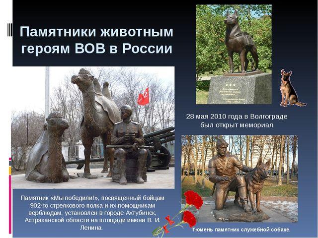 Памятники животным героям ВОВ в России 28 мая 2010 года в Волгограде был откр...