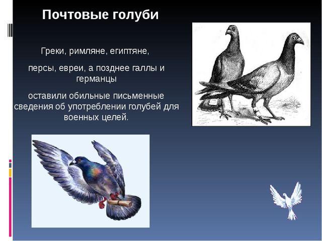 Почтовые голуби Греки, римляне, египтяне, персы, евреи, а позднее галлы и г...