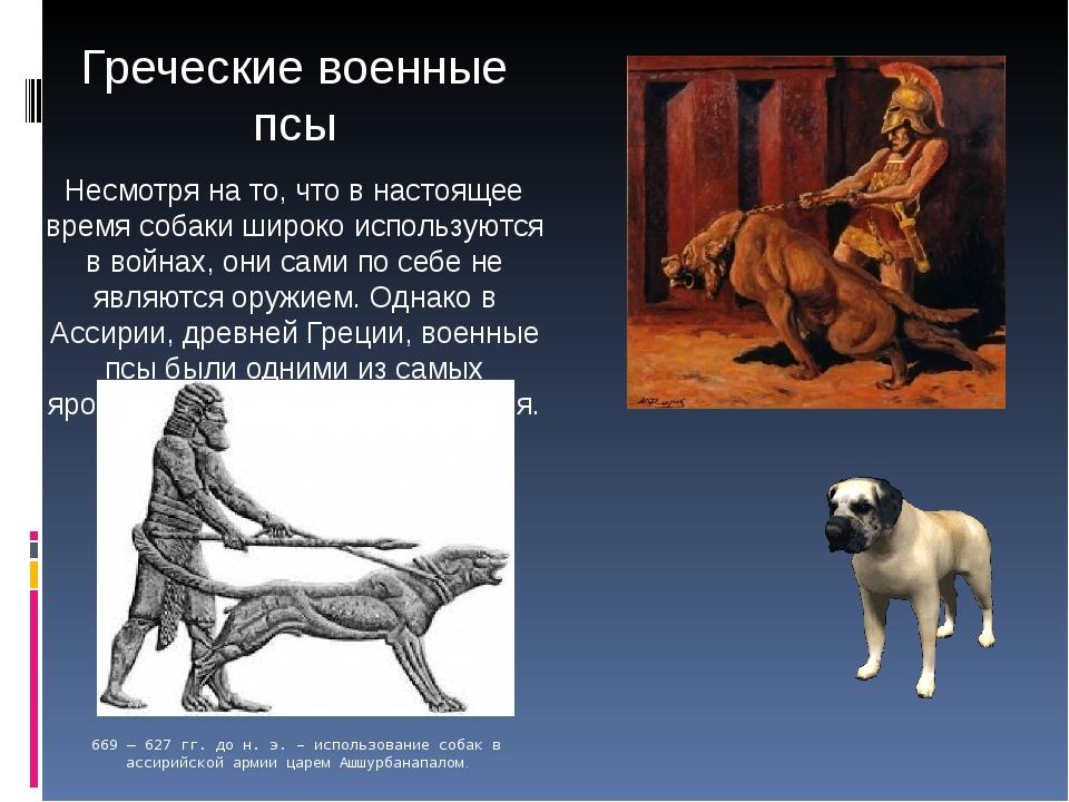 Греческие военные псы Несмотря на то, что в настоящее время собаки широко исп...