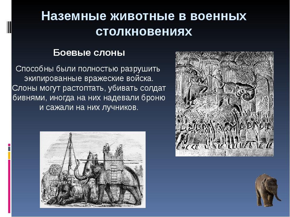 Наземные животные в военных столкновениях Боевые слоны Способны были полность...