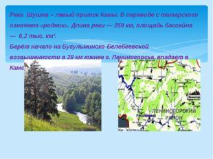 Река Шушма – левый приток Камы. В переводе с татарского означает «родник». Дл