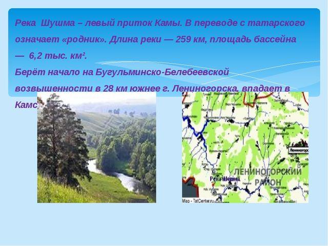 Река Шушма – левый приток Камы. В переводе с татарского означает «родник». Дл...