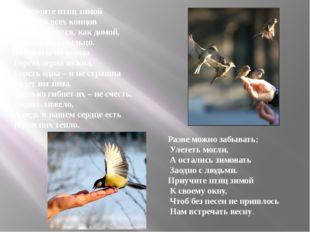 Покормите птиц зимой Пусть со всех концов К вам слетятся, как домой, Стайки н
