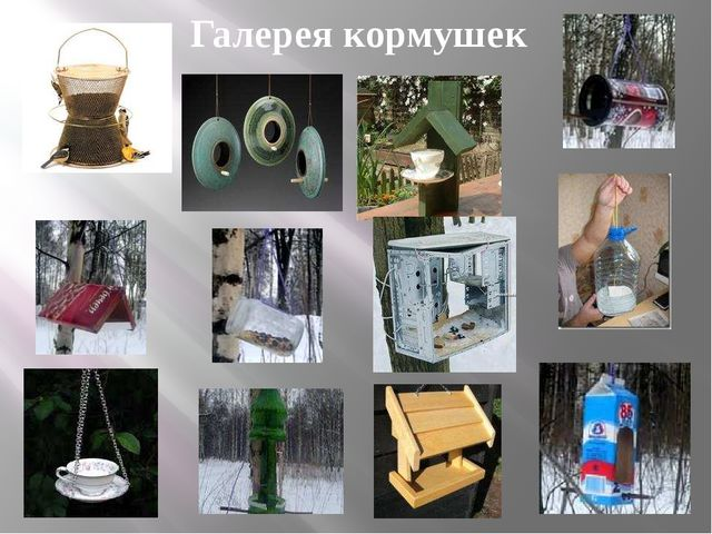 Галерея кормушек