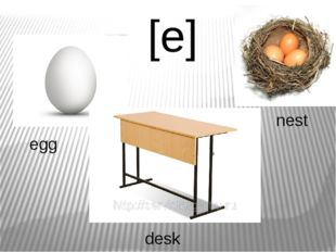 [е] egg desk nest